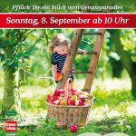 Apfelstraßenfest